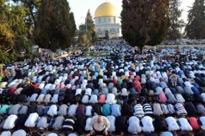 """Il est inconcevable qu'un Juif n'ait pas le droit de prier sur les lieux de NOTRE Temple. Pour les Musulmans, ce lieu ne signifie rien. Ils se prosternent la tête tournée en direction de la Mecque, dos et postérieurs tournés vers le Mont du temple et la Mosquée d'al-Aqsa"""" (Europe-Israël)"""