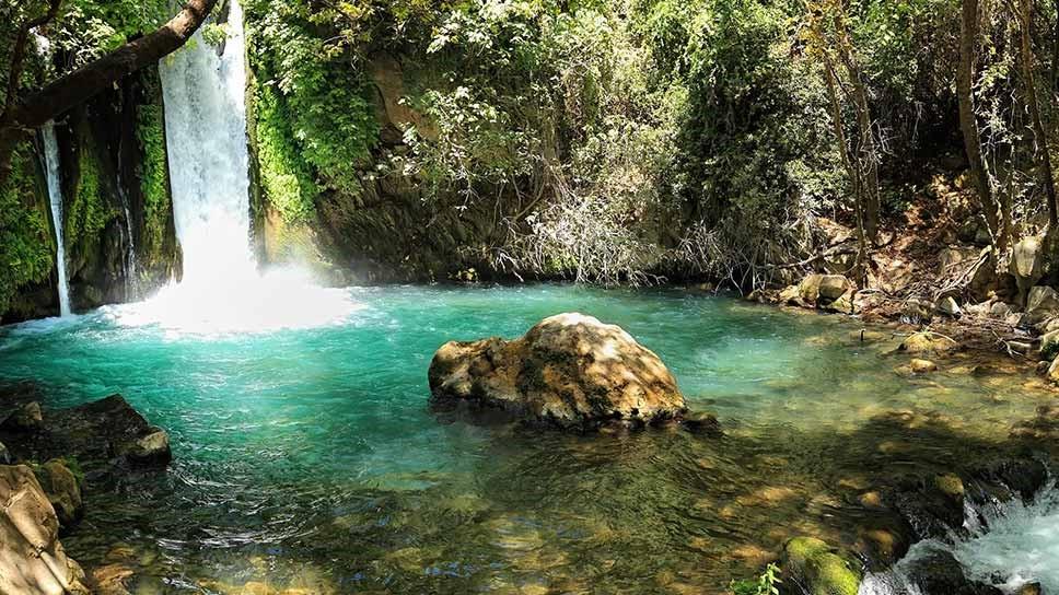 L'eau de la vie